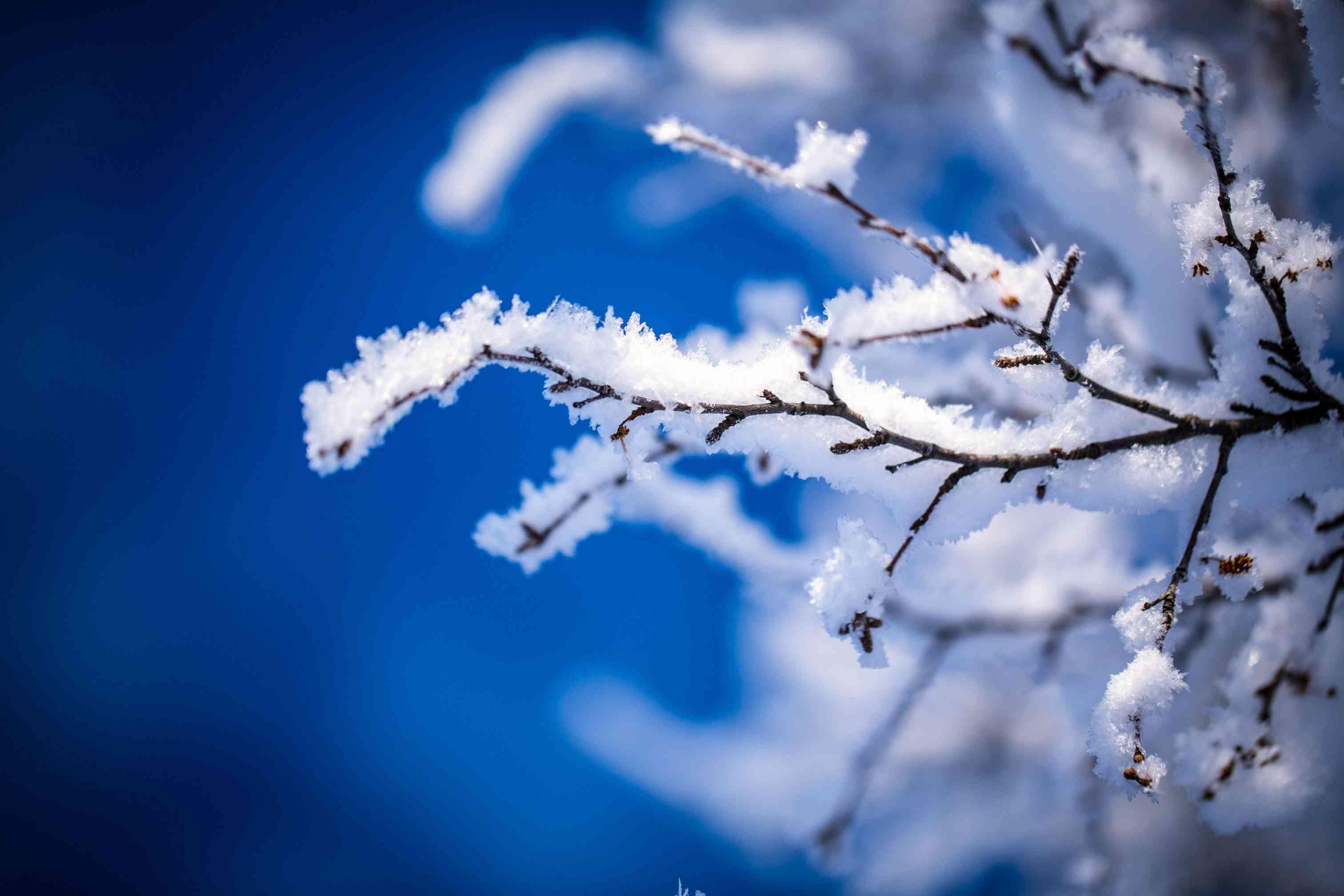 крещение. зима